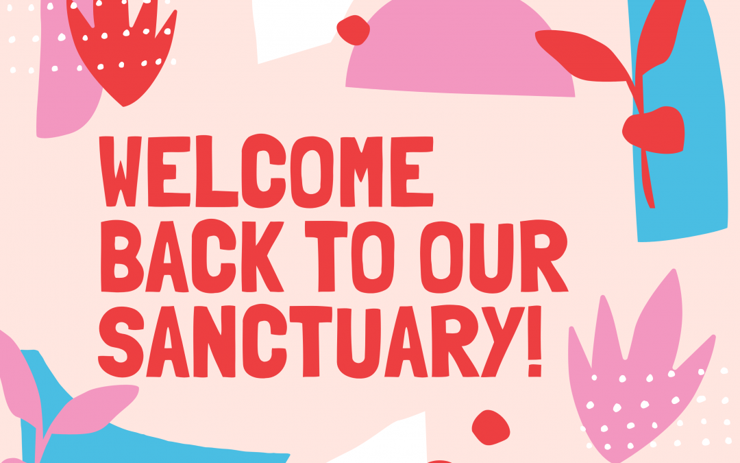 Welcome Back to Our Sanctuary